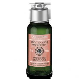 l'occitane shampoo